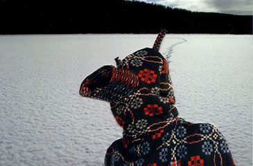 Figure wearing hooded garment made from a blanket, on a frozen lake